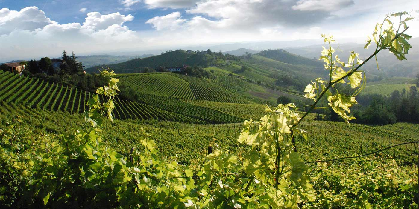 Happy-in-Tuscany-Chianti-2