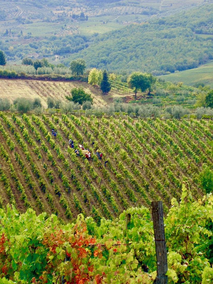 Location-tuscany