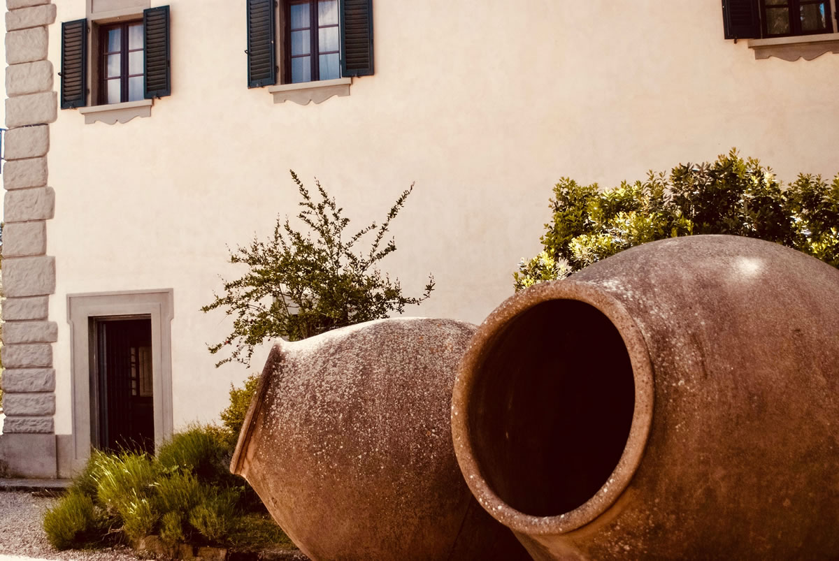 Tuscan-vineyards